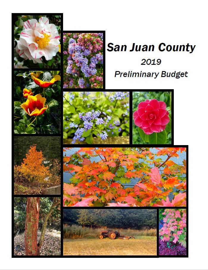 Cover Page of 2019 Preliminary Budget