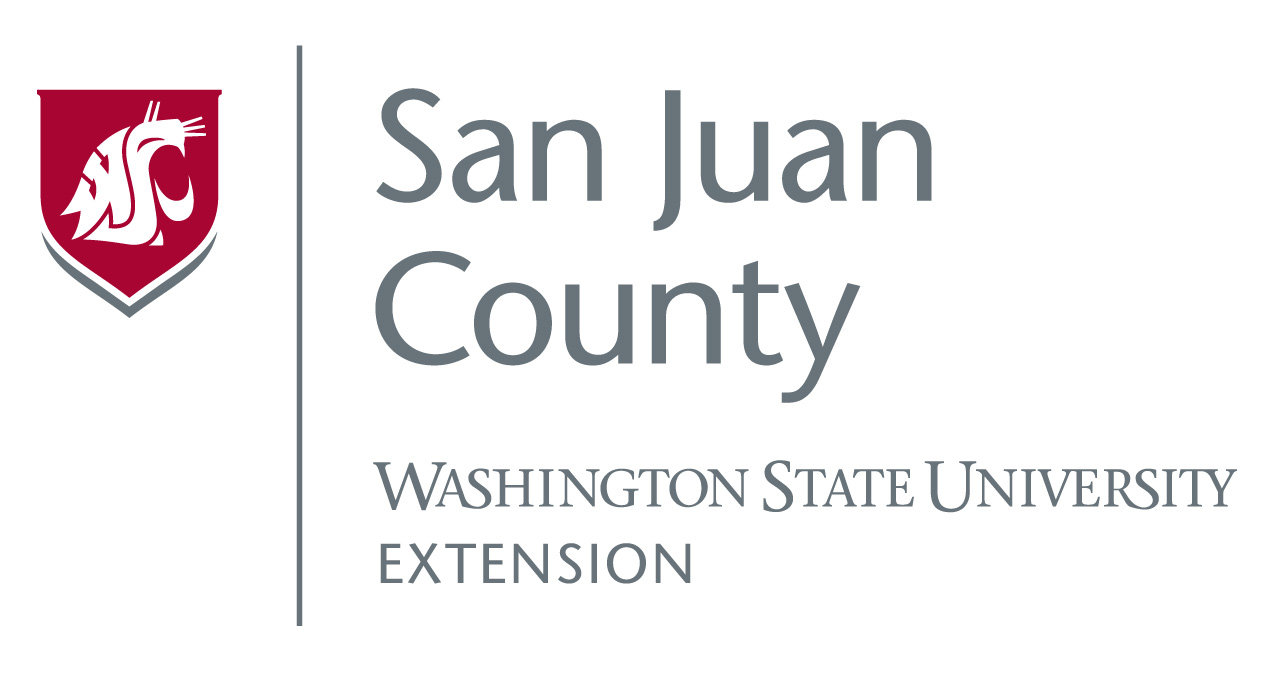WSU SJC extension