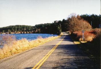 Road Next to Water