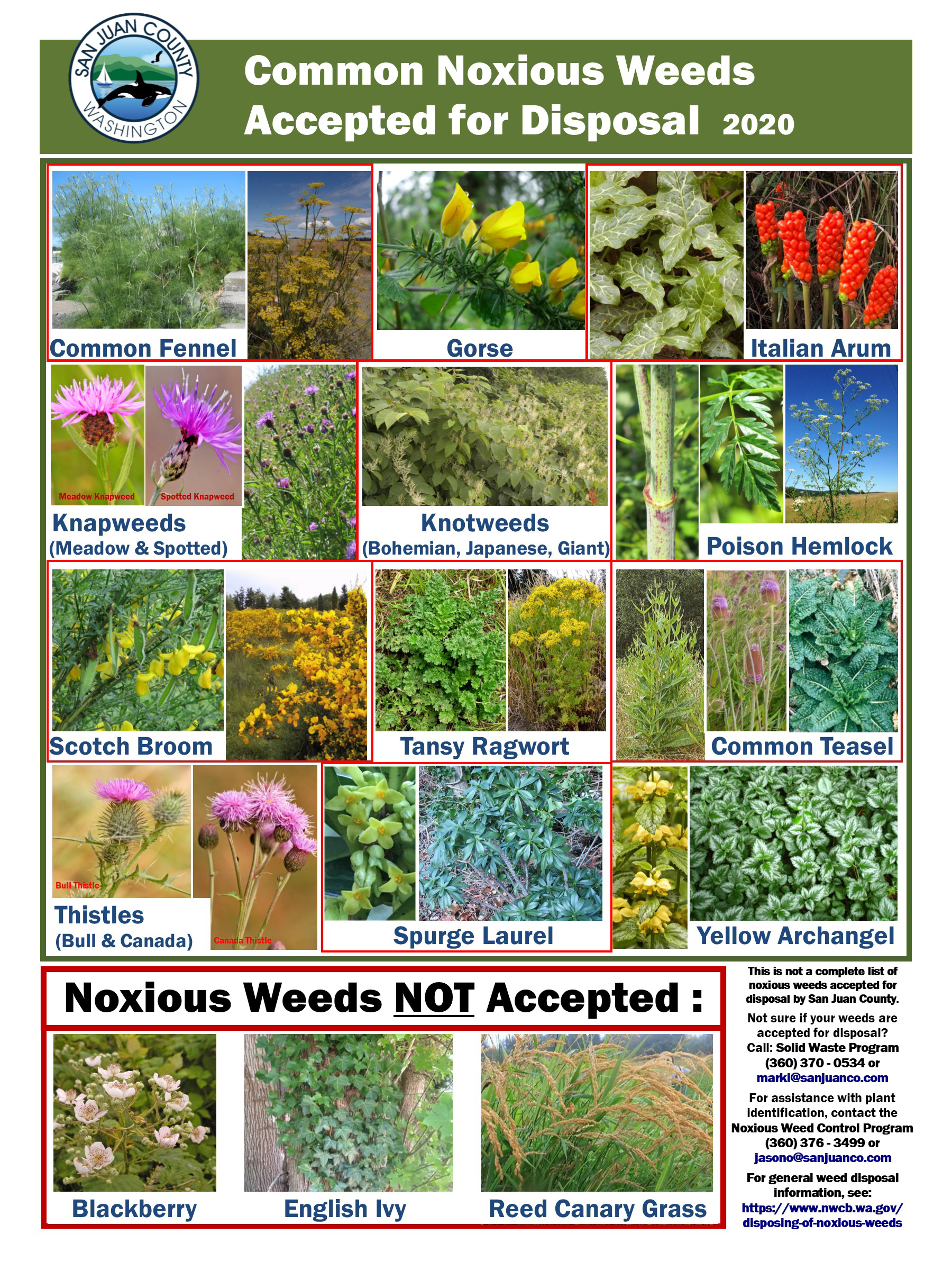 Noxious-Weed-Disposal-Poster-2020
